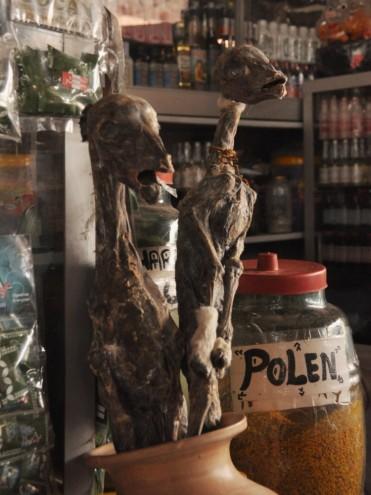 Zasuszone płody zwierząt - na rynku w Cuzco; Peru