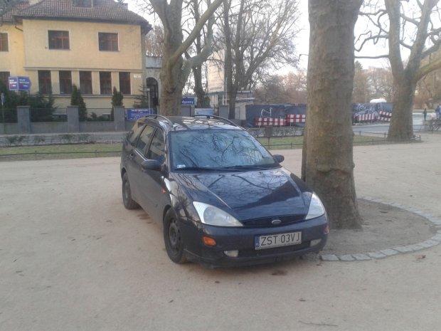 z17192195Q,Samochody_parkujace_w_alei_platanow