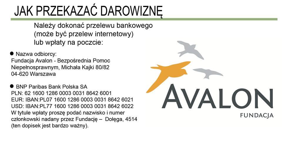Ola Dołęga AVALON