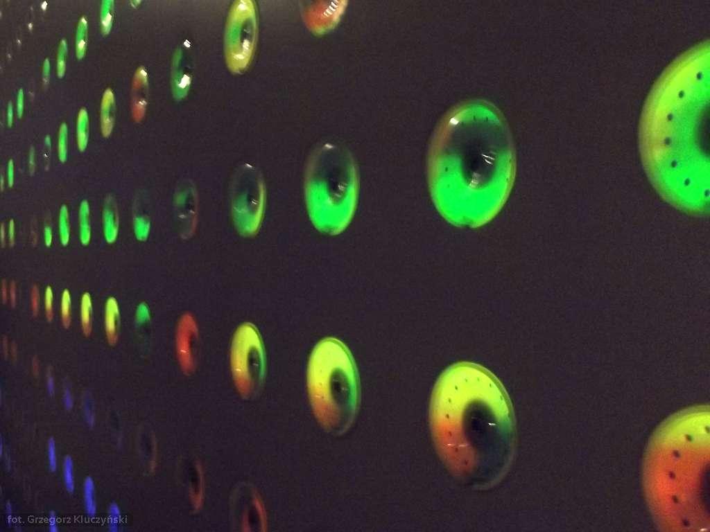 digital_ia.13 czyli sztuka, technologia i… biologia